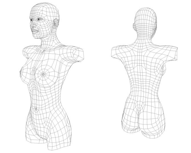 female_body31